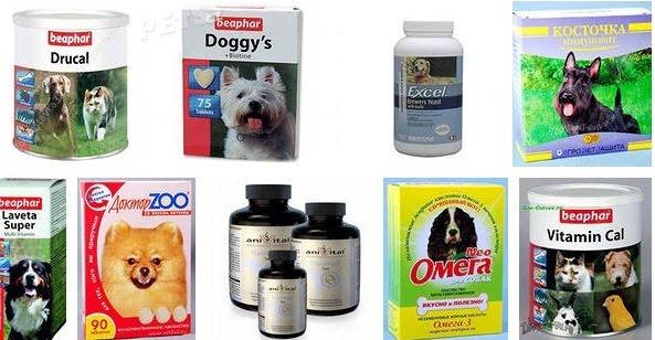 Выбор подходящего препарата витаминов для хаски